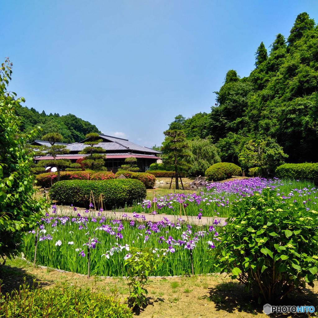 西山荘・初夏②