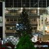 もうすぐです。 クリスマスツリー点灯式