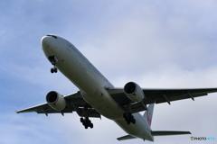 新千歳空港 科学技術大学前より JAL
