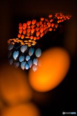 竹灯り<4>