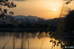 醍醐池の夕日