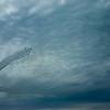 小牧航空祭 ブルーインパルス
