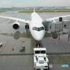 羽田空港 スポット11 JAL303
