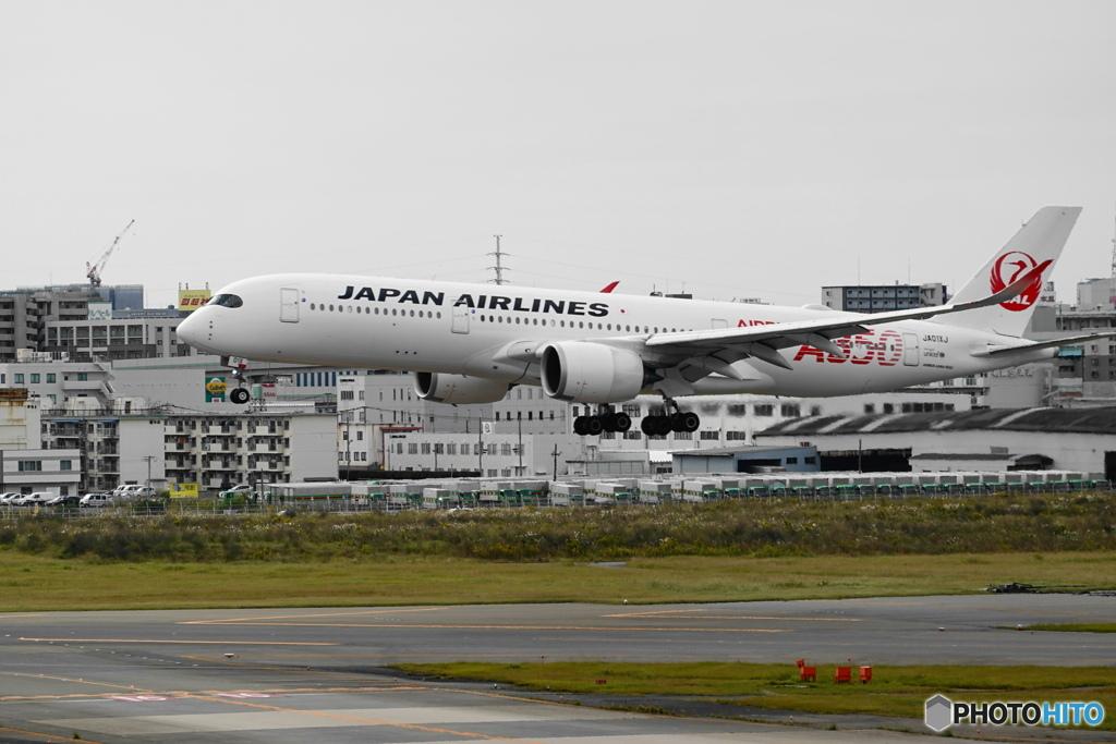 JAL A350-900 ja01xj ②