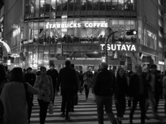 Shibuya Night #5  〜The Crossing〜