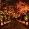石山寺ライトアップ