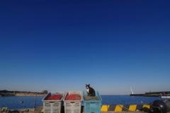 海が見えるワンルームマンション