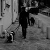 PARIS『モンマルトルのマダムと犬たち)