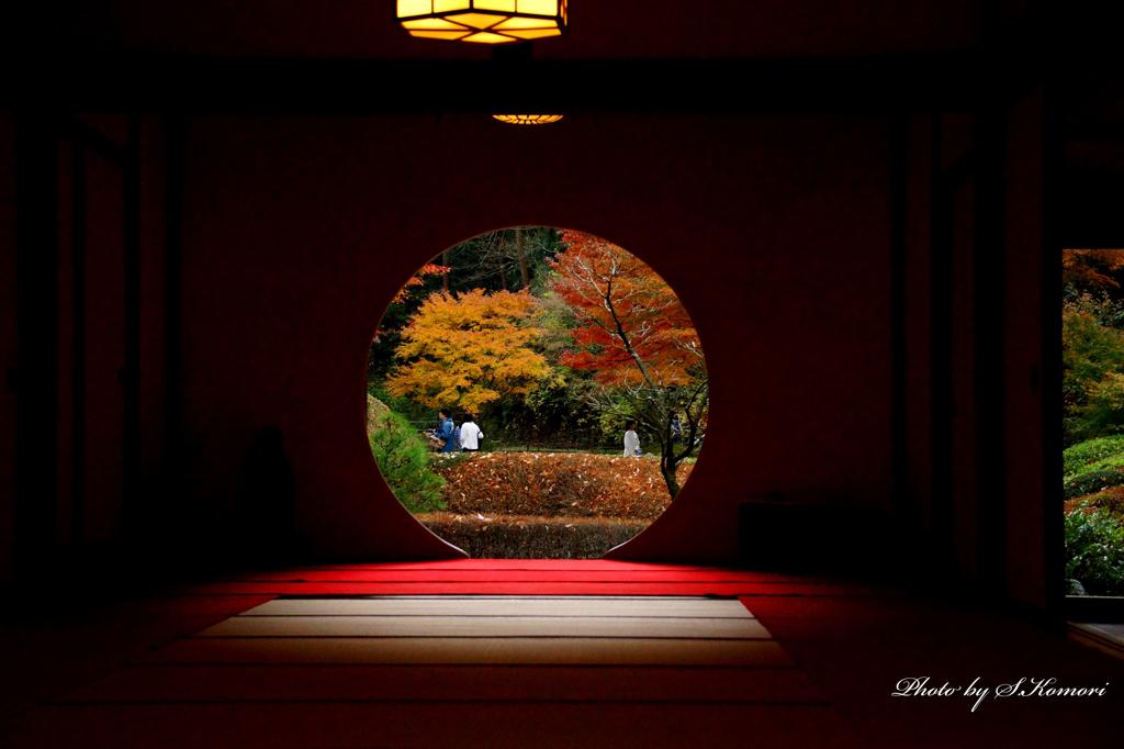 明月院の秋 Take10