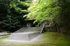 新緑の京都・法然院2