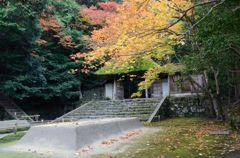 そうだ京都を写そう!法然院4