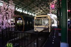 叡山電車「ひえい」試乗会9