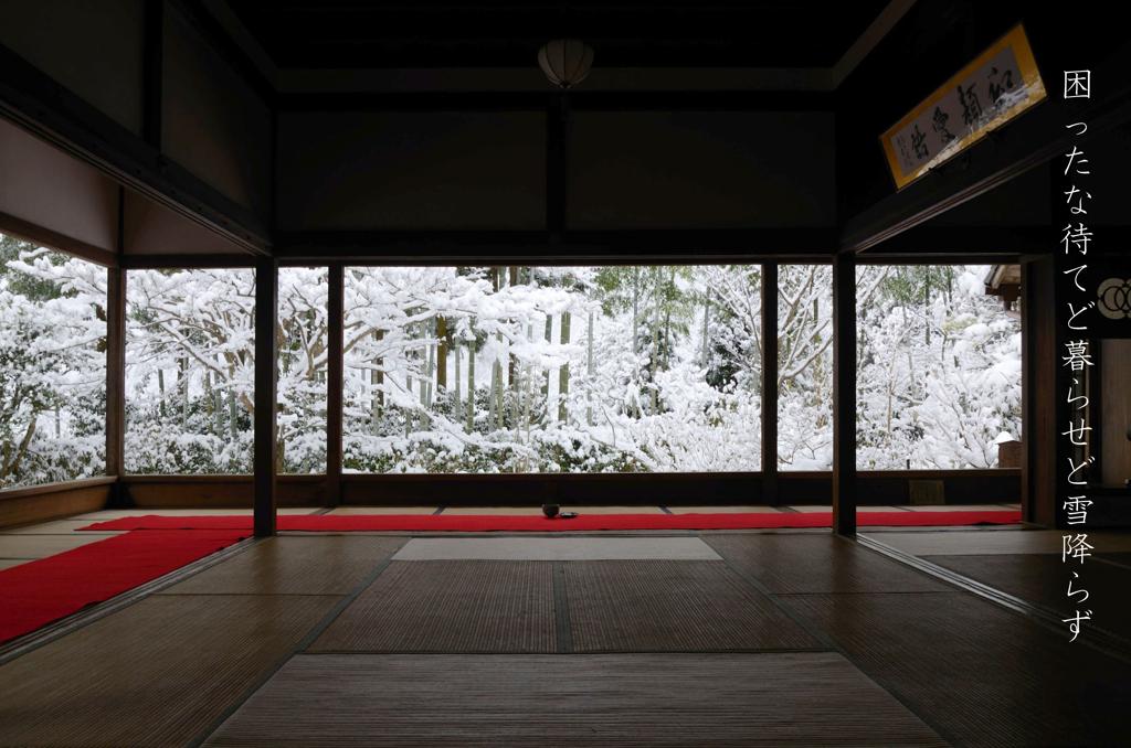 俳人写洛(雪乞いの宝泉院編)