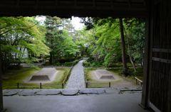 新緑の京都・法然院3