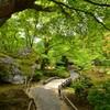 緑風の庭【宝厳院】