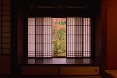 去秋の美【高桐院】