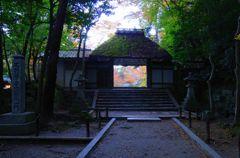 そうだ京都を写そう!法然院