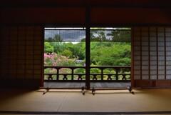 旧九条家の密かな夏の愉しみ【拾翠亭】