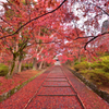 紅の石階段【毘沙門堂】