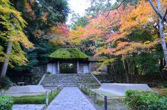 そうだ京都を写そう!法然院3
