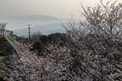 須磨浦山上公園
