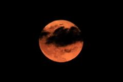 Moon in !