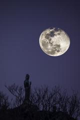 「月下観音」