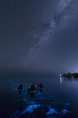 日本海の星空と夜光虫