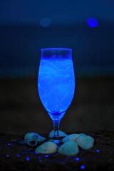 ワイングラスの海蛍
