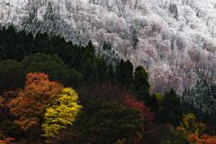 紅葉雪景Snap*5