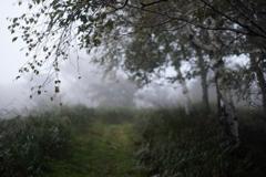 雨霧SNAP*3