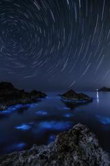 日本海の星空と夜光虫*2
