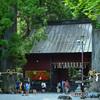 杉大木と富士の諏訪神社