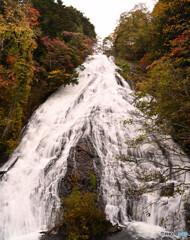 轟き響く瀑布の湯滝