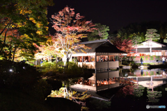 秋の夜の散歩