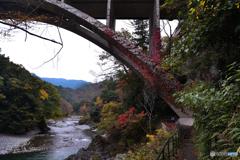 蔦の絡まる橋