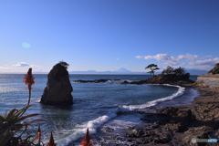 ここも湘南海岸かな。。
