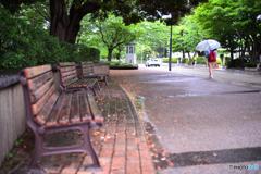 雨の横浜山手