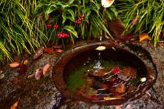 秋色濃い鉄錆の水琴窟