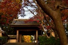 優しさが嬉しかった円覚寺