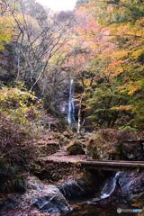 秋彩の払沢の滝