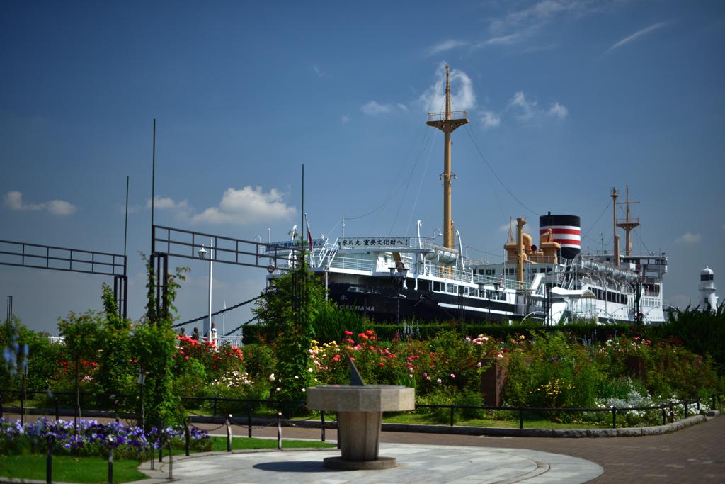 薔薇園を巡る船旅