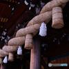 寒川神社の大注連縄