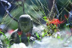 花に包まれほっこり地蔵
