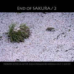 End of SAKURA / 2