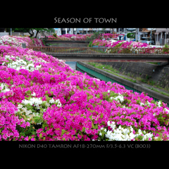 Season of Town