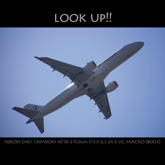 look up!!