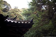 山寺の初秋