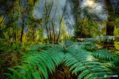 御所ヶ岳の森 #4