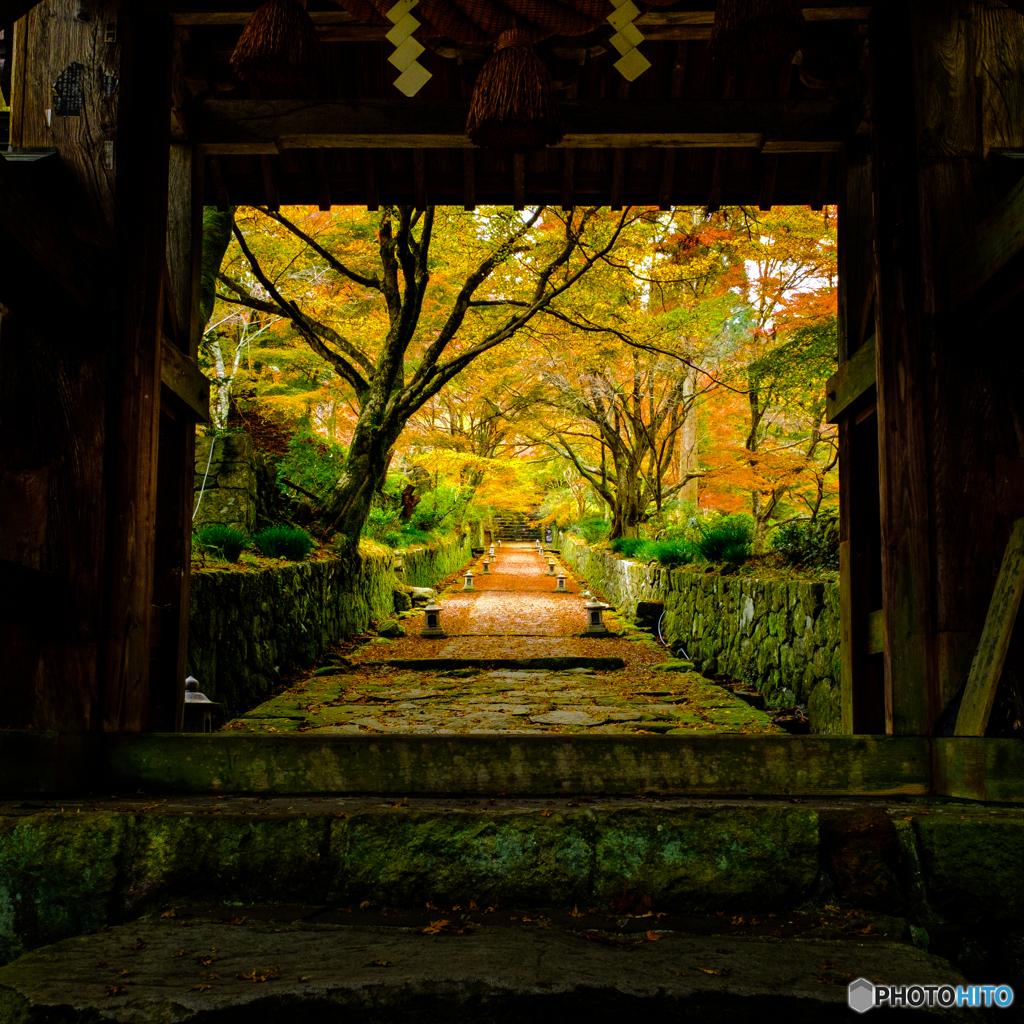 両子寺の紅葉(3)